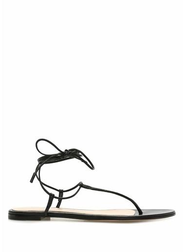 Gianvito Rossi Sandalet Siyah